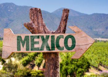 Direction Mexico et ses vignobles, Mexico et ses alentours, expérience culinaire, la route des saveurs