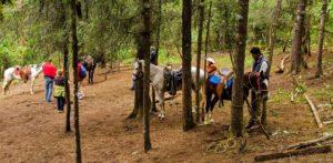 Balade à cheval Valle de Bravo, Papillons Monarques, Valle de Bravo, article blog JPM Tours
