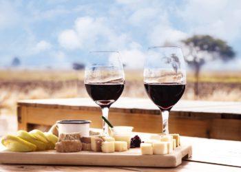 Vins et fromages du Mexique, alentours de Mexico et Basse Californie, plateau