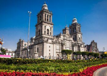 Zocalo Mexico, cathédrale, fleur, Mexique